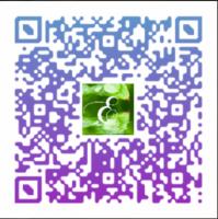Code QR avis google, Excellence Wellness & Spa Massage Bien etre et Beauté Bio BIARRITZ, BAYONNE, ANGLET.